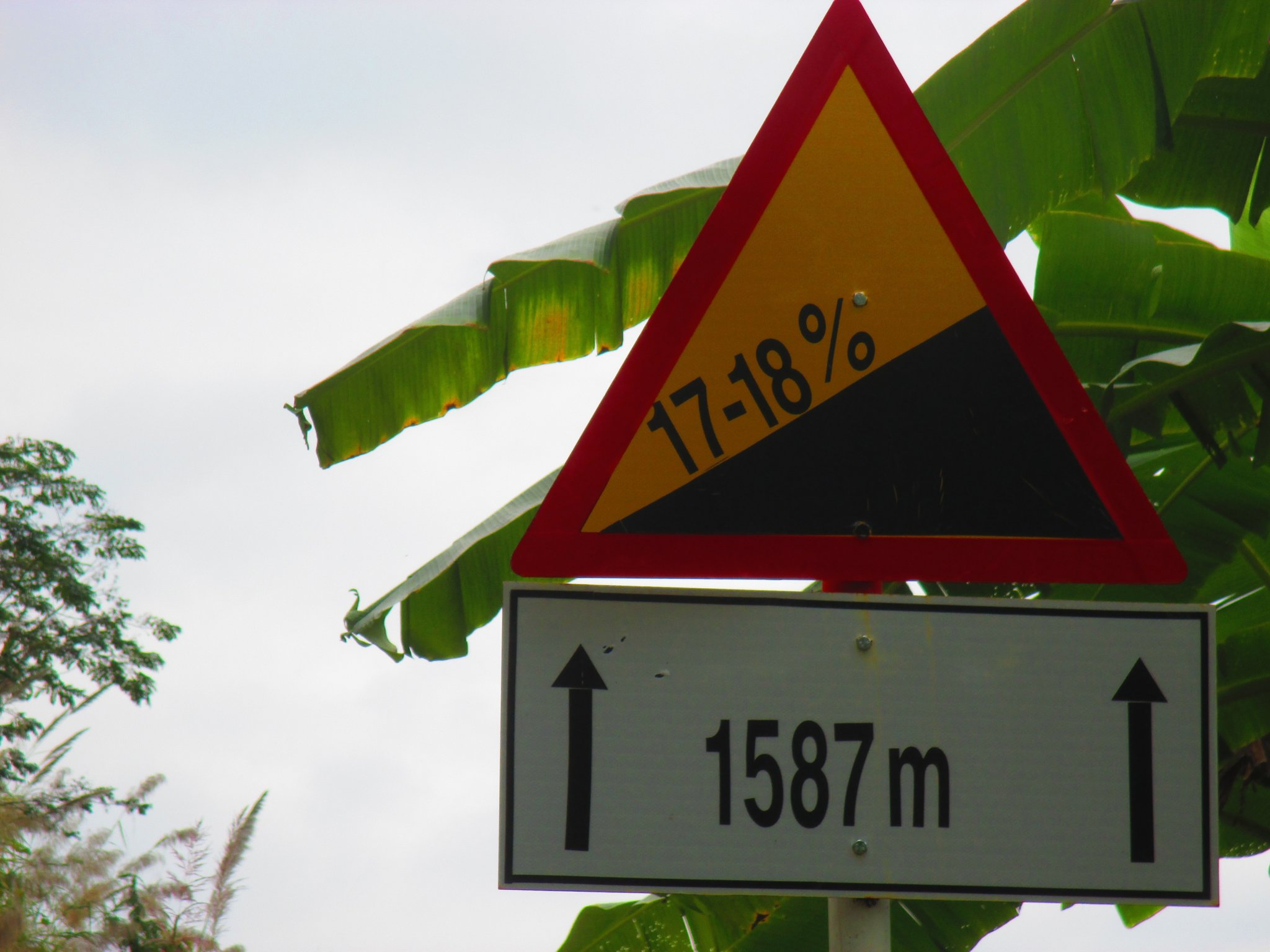 IMG_1352.JPG