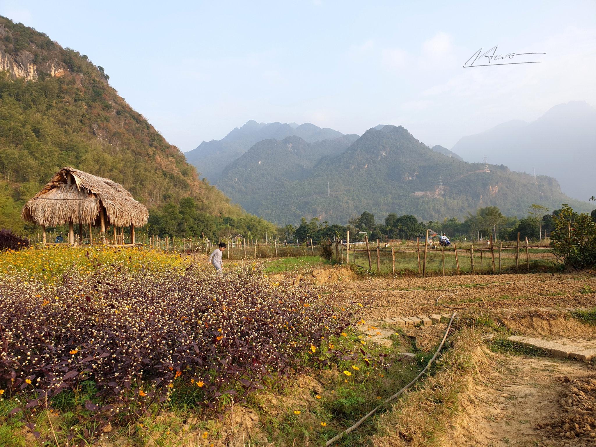 TVH's pic - Mai Chau, Hoa Binh - 301219 (6).jpg