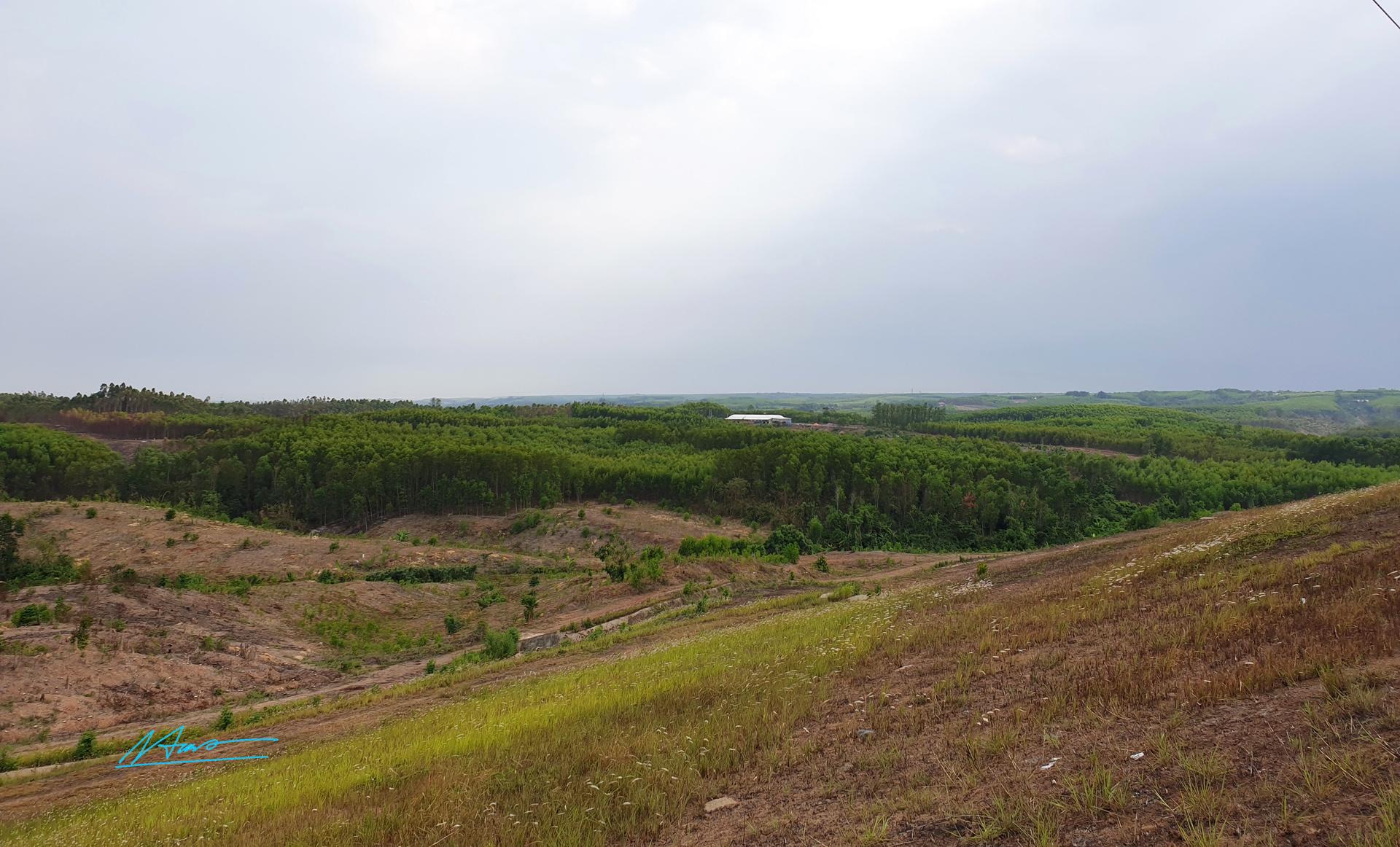 TVH's pic - Xung quanh Ho Tri An, Vinh Cuu, Dong Nai  - 020520 (3).jpg